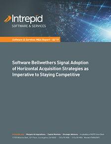 Newletter_SoftwareServices_M&AReport_Q219